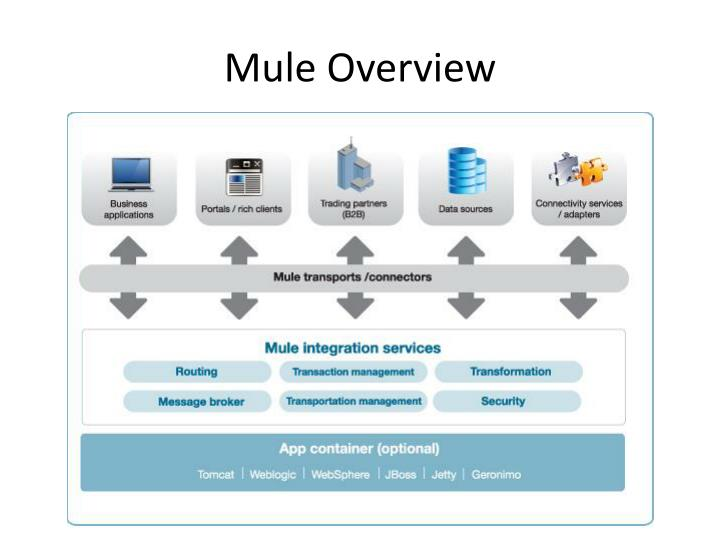 Mule Overview