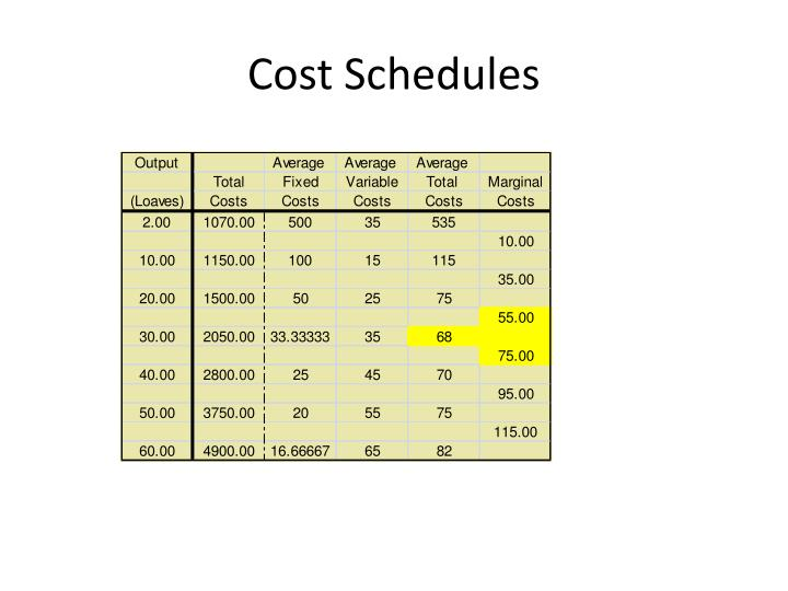 Cost Schedules