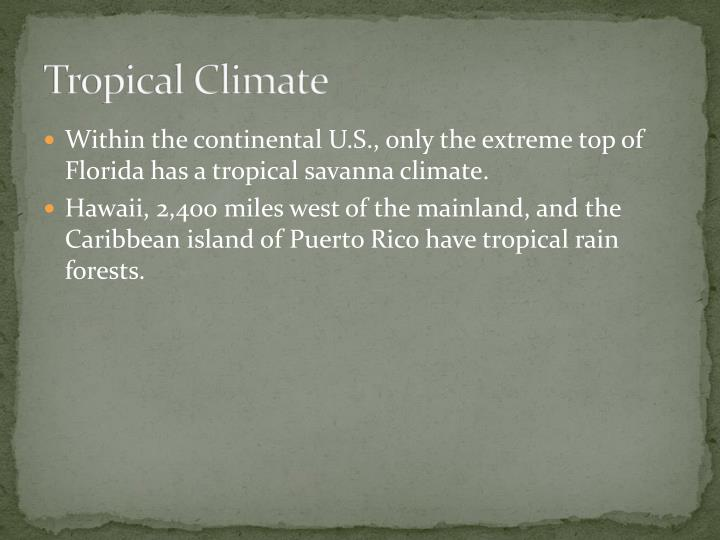 Tropical Climate
