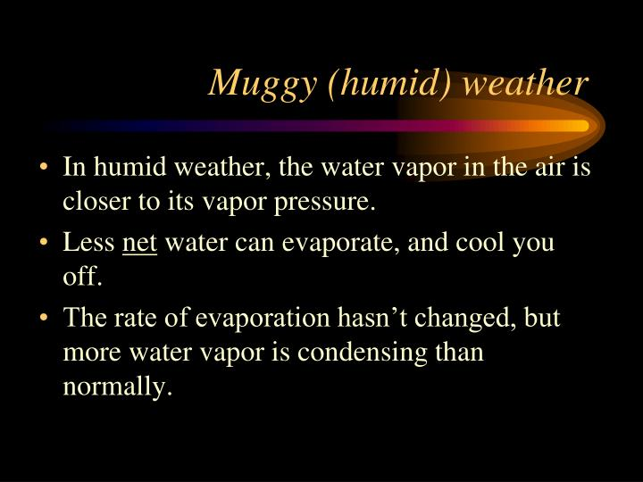 Muggy (humid) weather