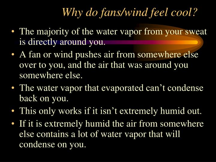 Why do fans/wind feel cool?