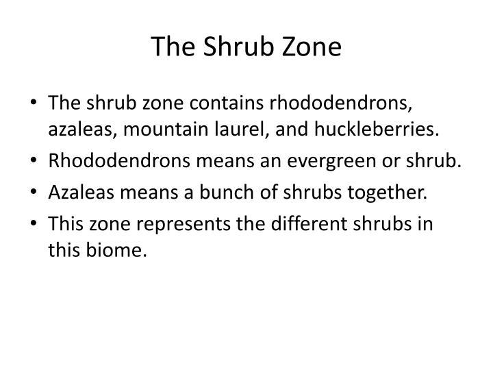 The Shrub Zone