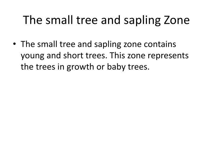 The small tree and sapling Zone