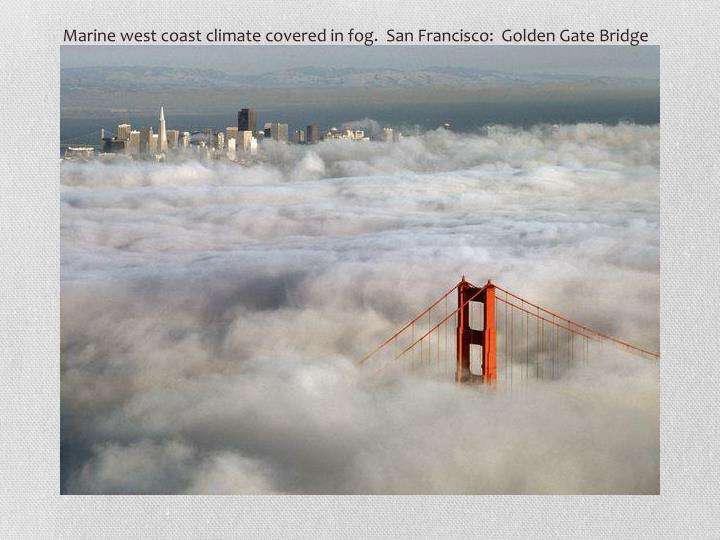 Marine west coast climate covered in fog.  San Francisco:  Golden Gate Bridge