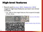 high level features1