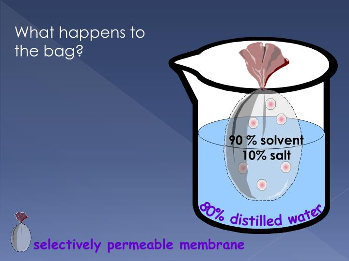 What happens to the bag?