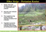 filter strips pertanian kontur