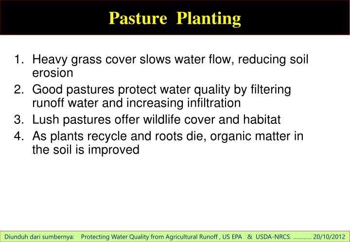 Pasture  Planting