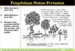 pengelolaan hutan pertanian