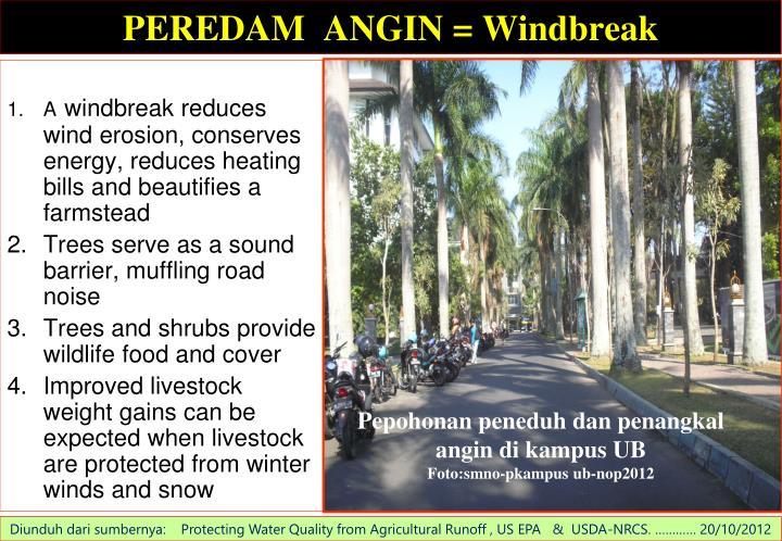 PEREDAM  ANGIN = Windbreak