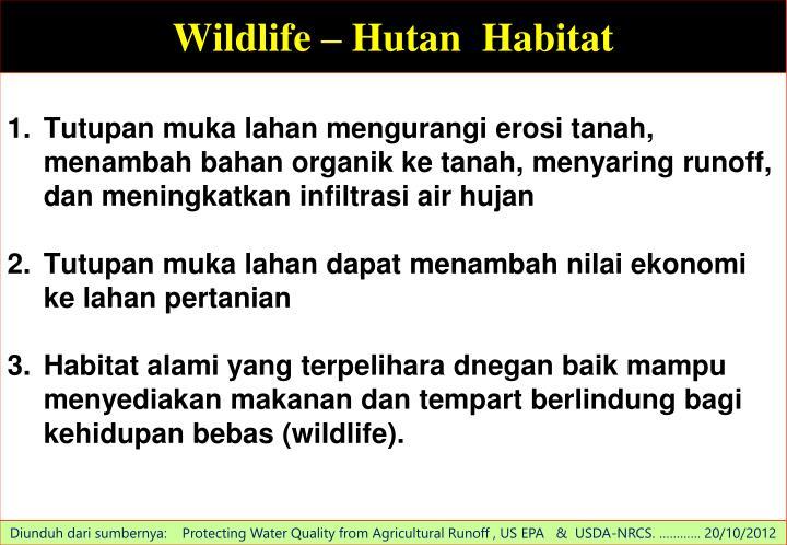 Wildlife –