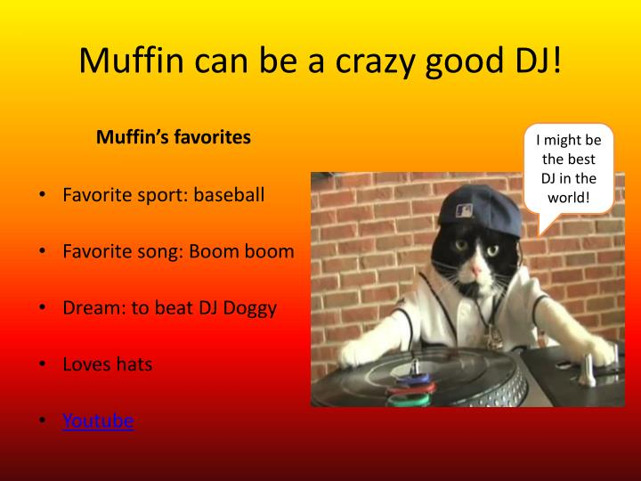 Muffin can be a crazy good DJ!