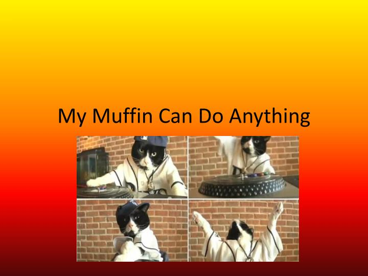 my muffin can do anything