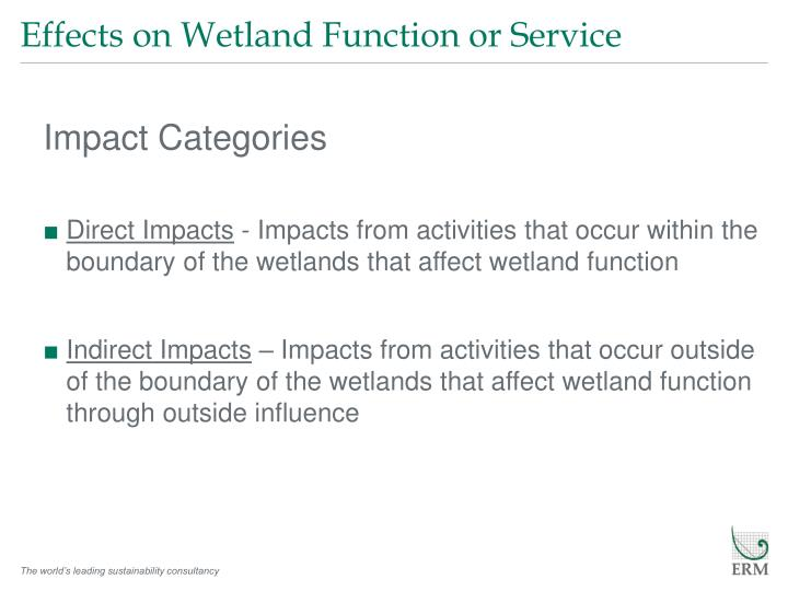 Effects on Wetland Function or Service
