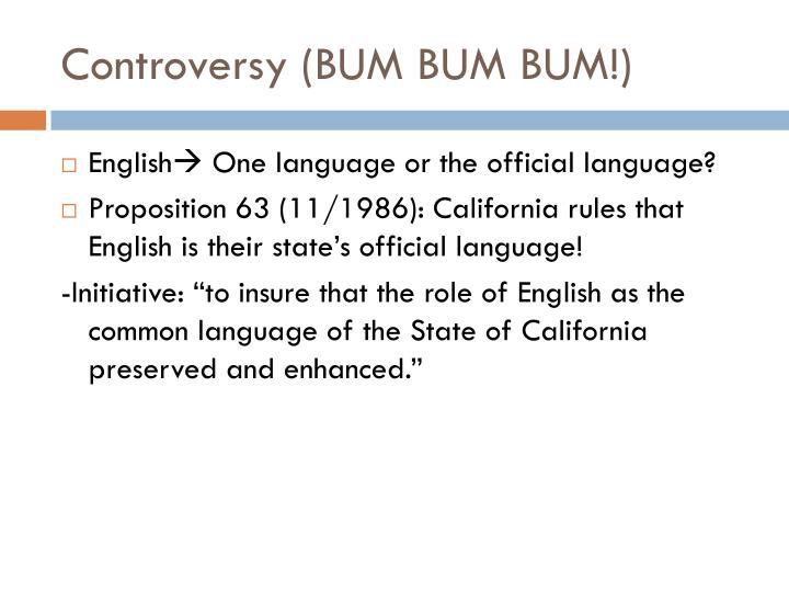 Controversy (BUM