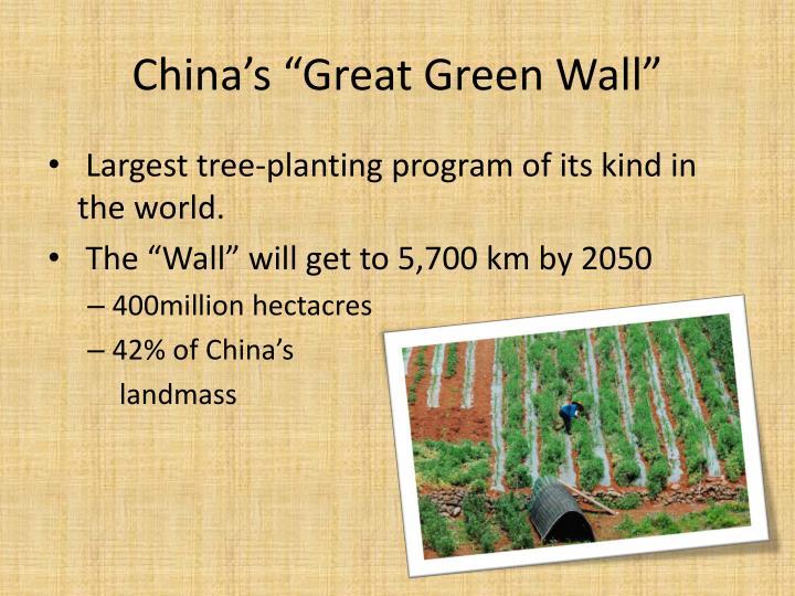 """China's """"Great Green Wall"""""""