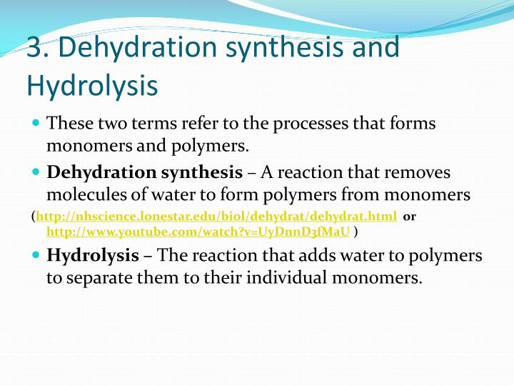 3. Dehydration synthesis and Hydrolysis