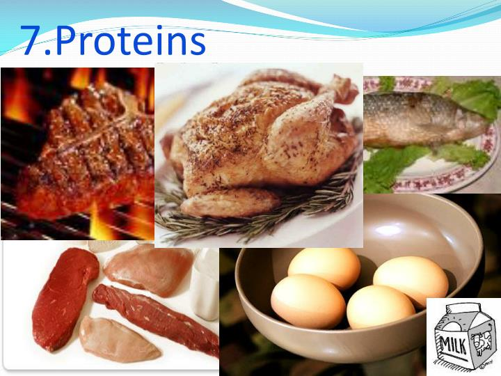 7.Proteins