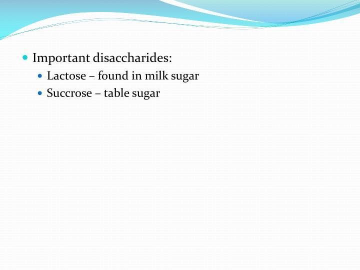 Important disaccharides: