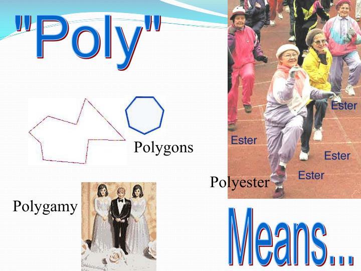 """Poly"""