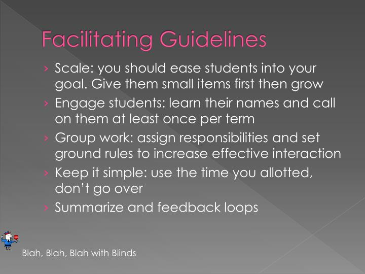 Facilitating guidelines