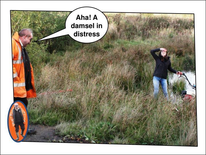 Aha! A damsel in distress