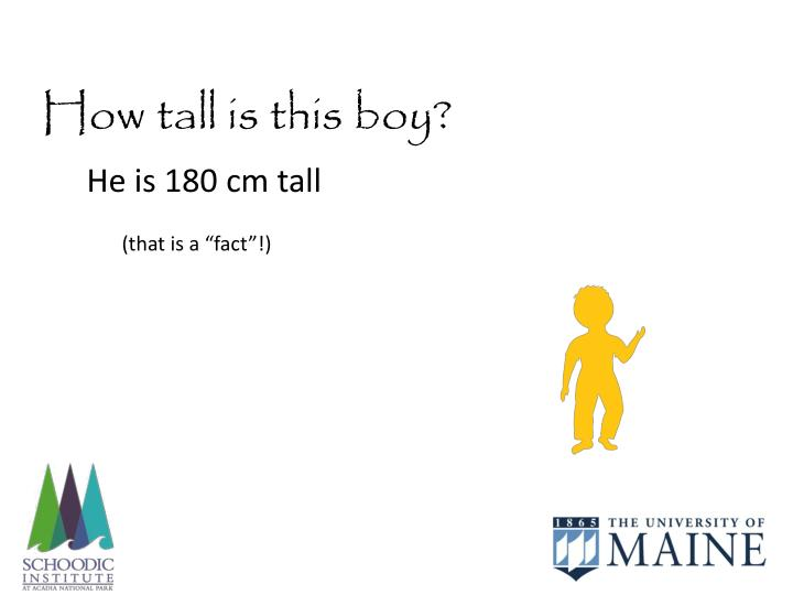 How tall is this boy?
