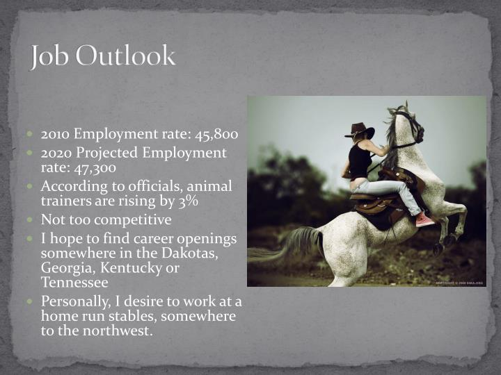 Job Outlook