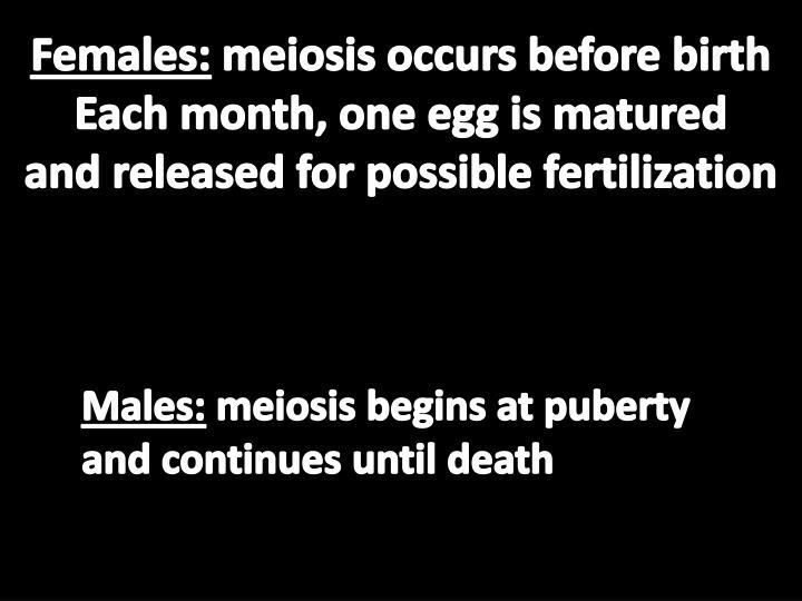 Females: