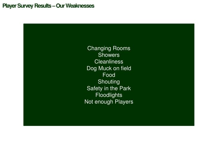 Player Survey Results – Our Weaknesses