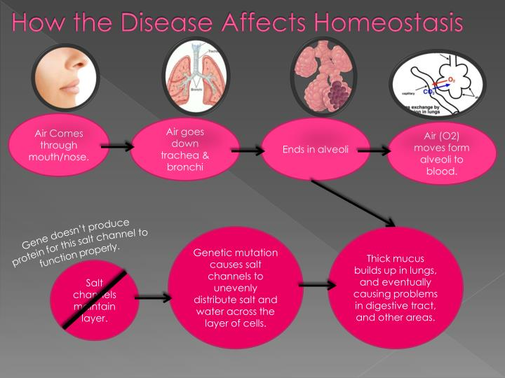 How the Disease Affects Homeostasis