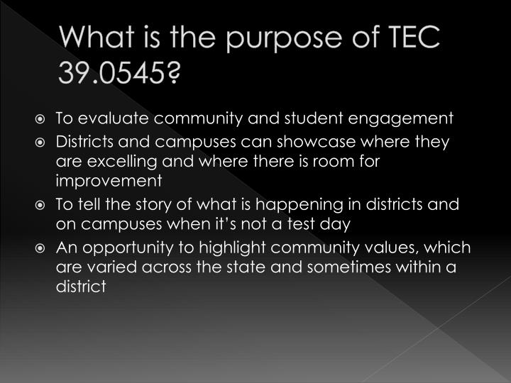 What is the purpose of TEC 39.0545?
