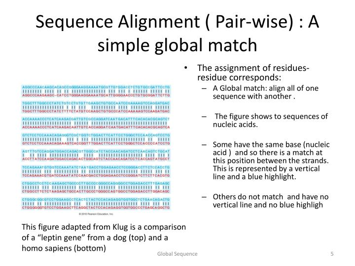Sequence Alignment ( Pair-wise) : A simple global match