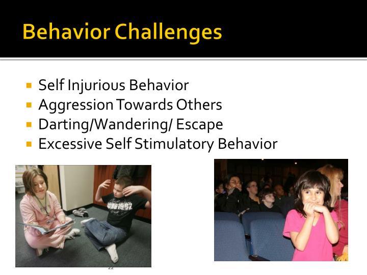 Behavior Challenges