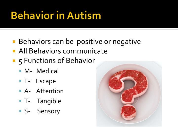 Behavior in Autism