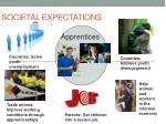 societal expectations