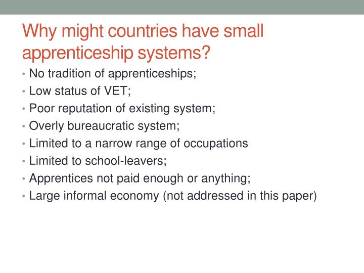 Why might countries have small apprenticeship systems?