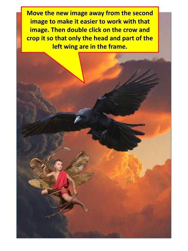Move the new image away from the second image to make it easier to work with that image. Then double click on the crow and crop it so that only the head and part of the left wing are in the frame.