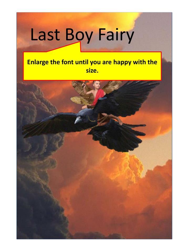 Last Boy Fairy