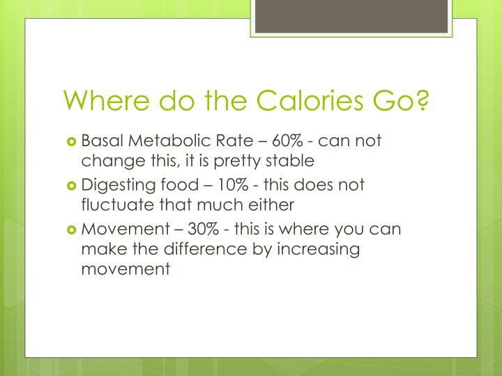 Where do the Calories Go?