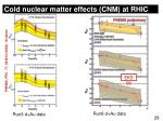 cold nuclear matter effects cnm at rhic