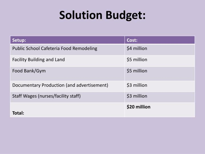 Solution Budget: