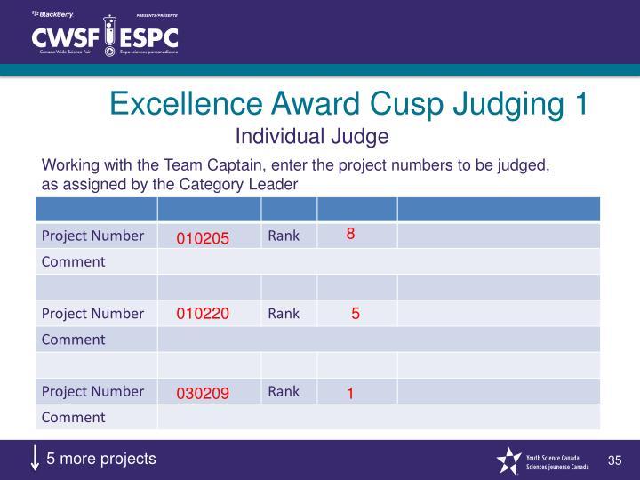 Excellence Award Cusp Judging 1