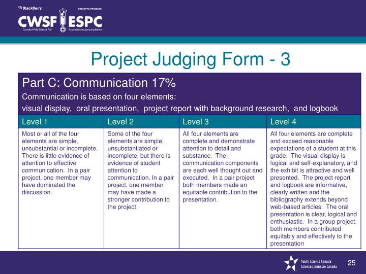 Project Judging Form - 3