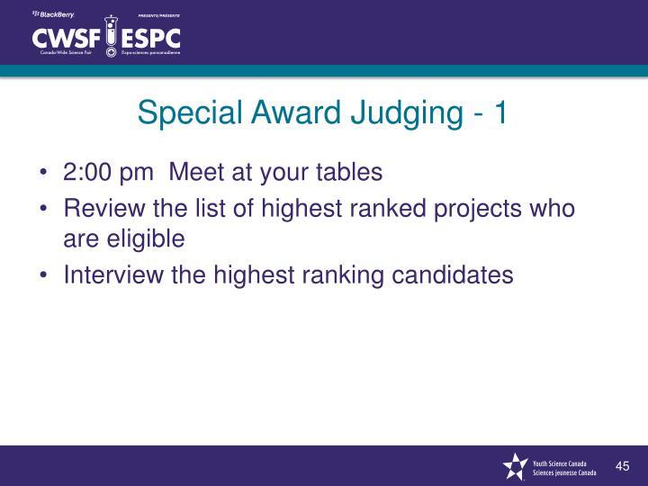Special Award Judging - 1