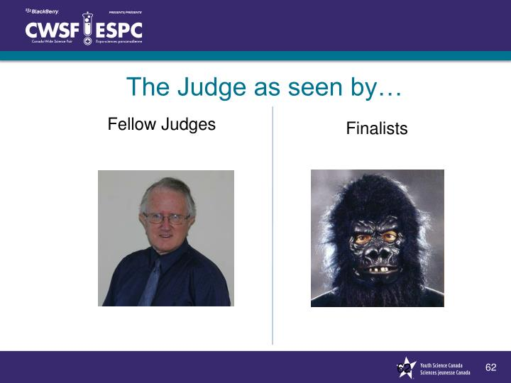 The Judge as seen by…