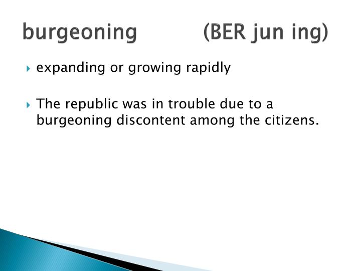 burgeoning(BER