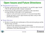 open issues and future directions