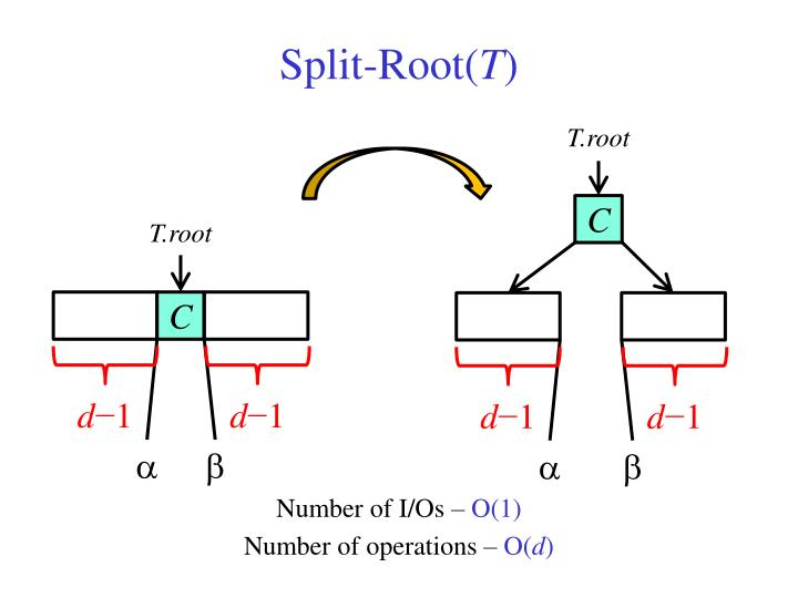 Split-Root(