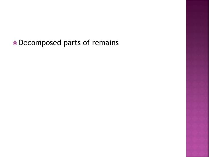 Decomposed parts of remains